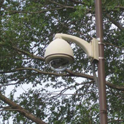 Arecont's security system installed at Alburtis' yard waste centre helps reduce illegal dumping