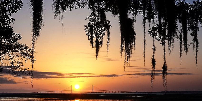 Larry Anderson's go-to destination is Jekyll Island on the Georgia coast