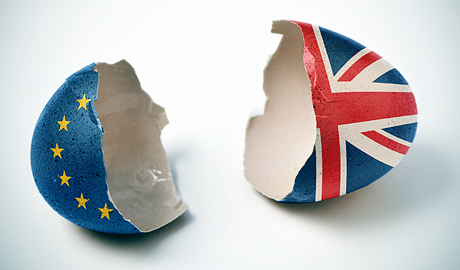 The Brexit result has already led to calls for similar referendums in the Netherlands (Nexit), France (Frexit) and Austria (Oexit)