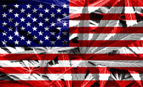 Cannabis and Security: The security challenges of legalised marijuana sales in the United States