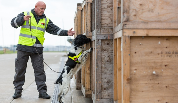 Securitas achieves FREDD certification becoming UK's first government-certified canine security provider