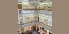 Intrepid provides ideal surveillance solution for Gordon Medical Museum