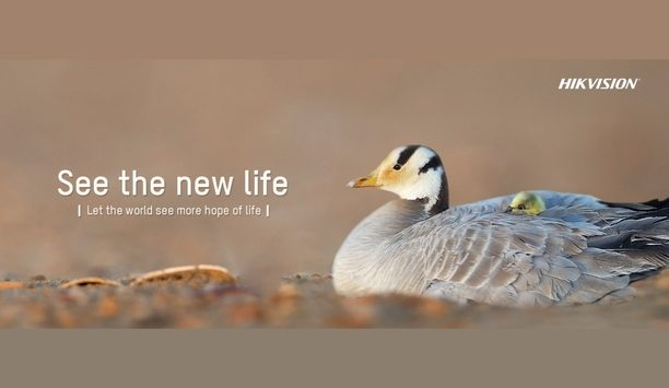 Hikvision security cameras and advanced video tech installed at wild bar-headed goose hotspots in China