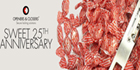 OPENERS & CLOSERS celebrates its first 25 years in the security industry