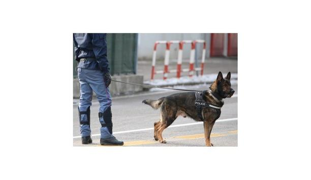 Dogs vs. Under Vehicle Scanners (UVIS)