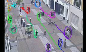 Video Analytics Systems In Real-world Environments