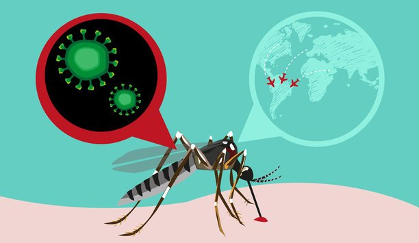 How To Tackle The Zika Virus Impact On Employee Security, Companies And Business Travel