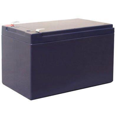 Bosch IPS-BAT12V-12AH Lead Battery For Intrusion Alarm Systems