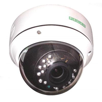 Pecan VRD146L 1/3 inch CCD 600 TVL IR LED dome camera